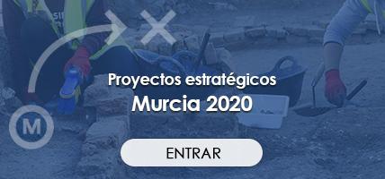 Imagen proyectos estrategicos banner